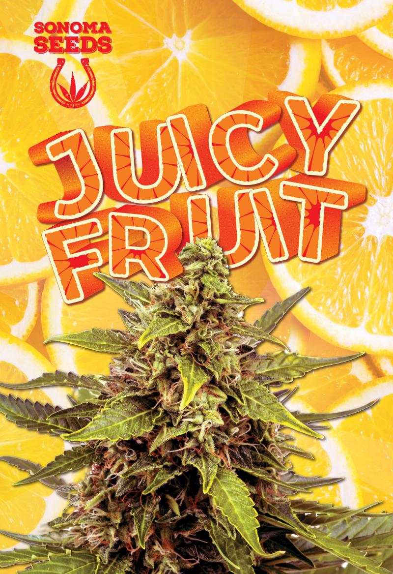 juicy fruit seeds