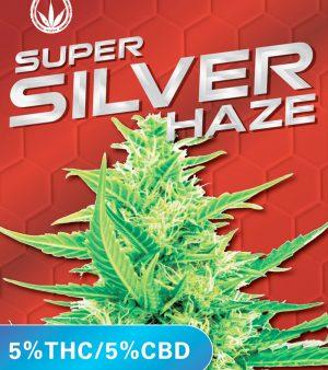 super silver haze seeds