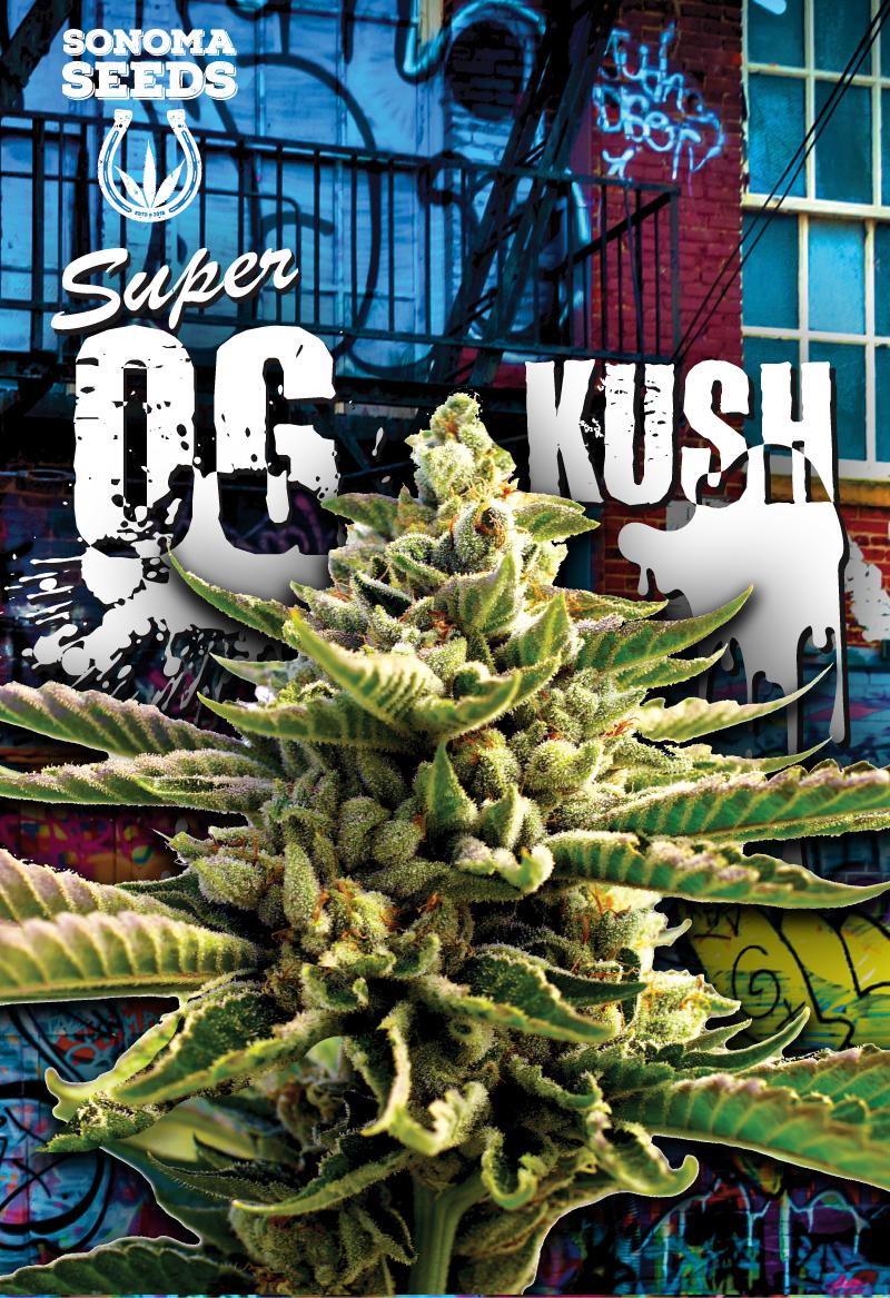 Super OG Kush Seeds