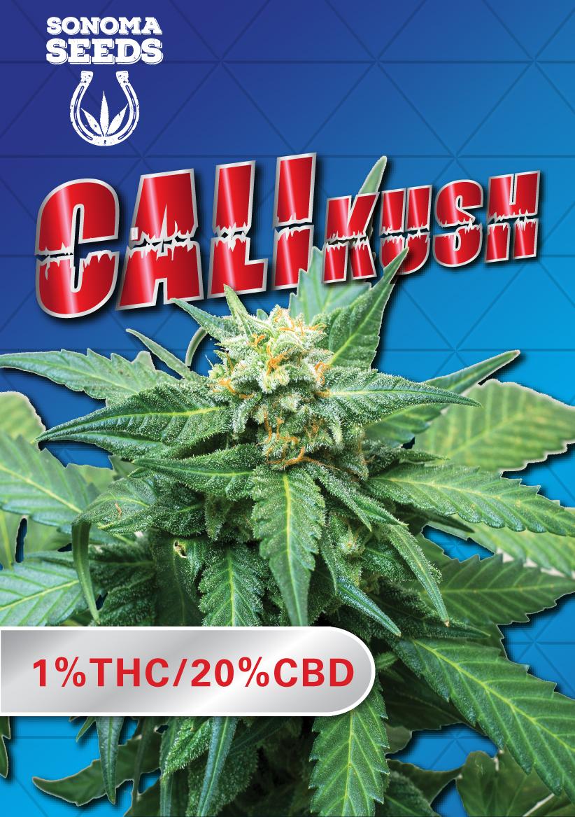 Cali Kush CBD Marijuana Seeds