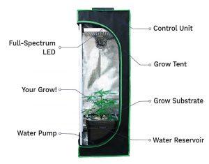 cannacloset grow box